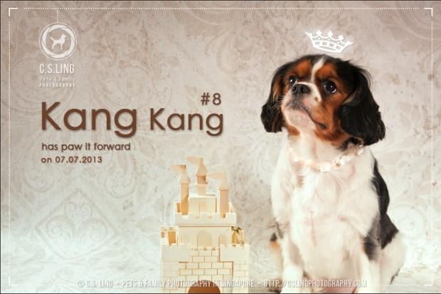 AspirantSG - Paw It Forward Session 8 With Kang Kang