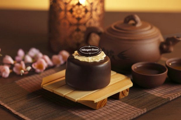 Häagen-Dazs Ice Cream Mooncakes Chocolate