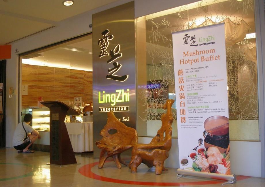 Lingzhi Vegetarian Restaurant - AspirantSG