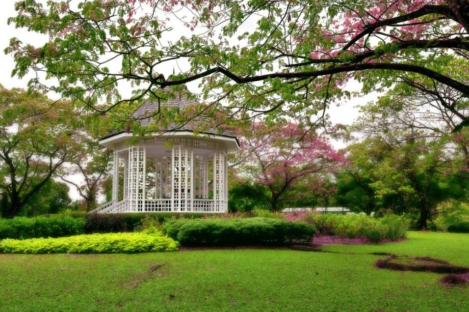 Singapore Botanic Gardens - AspirantSG