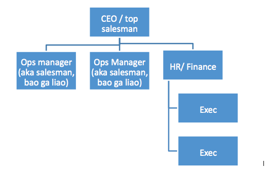 Typical Organisational Structure Of Security Agency