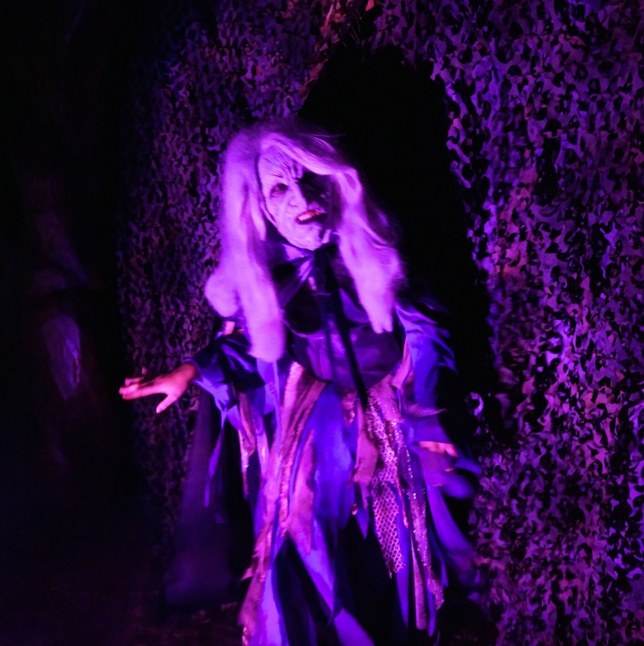 Witch Scary Tales Halloween Horror Nights 4 - AspirantSG