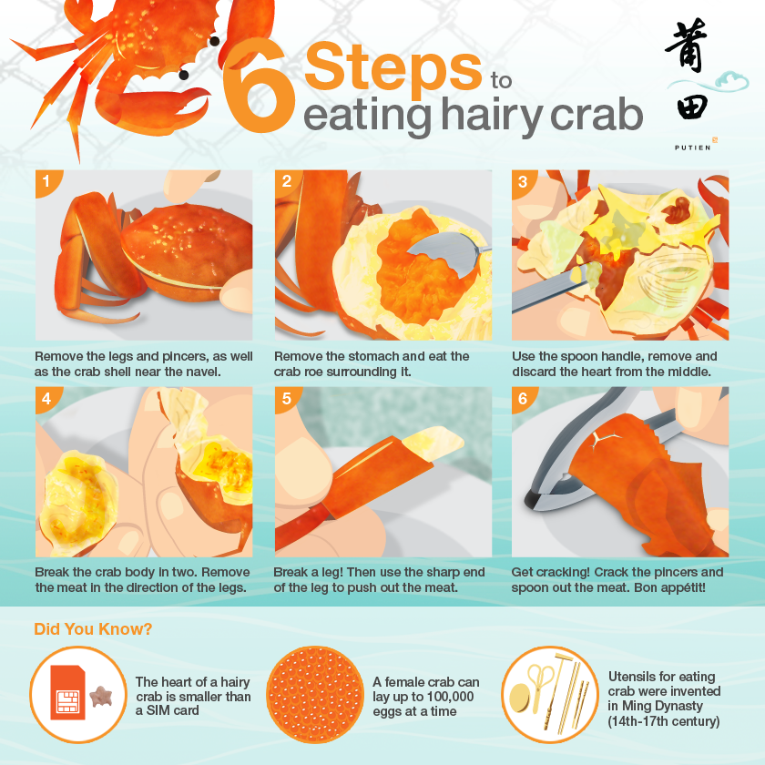 6 Steps To Eating Hairy Crab - AspirantSG