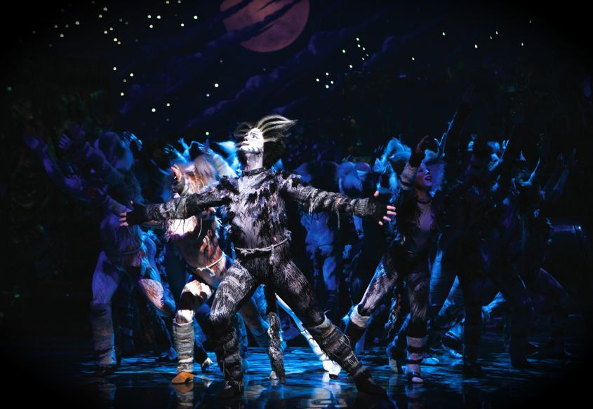 Cats Musical Performance In Singapore - AspirantSG