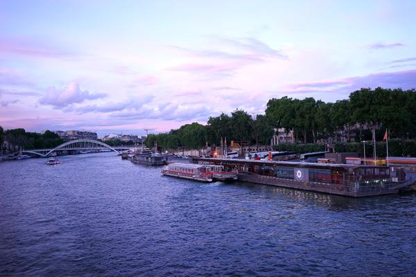 View Of La Senine Paris - AspirantSG