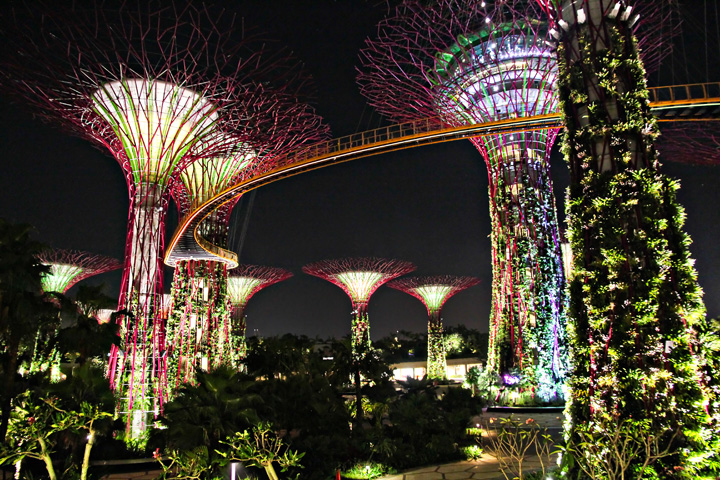 Gardens By The Bay - AspirantSG