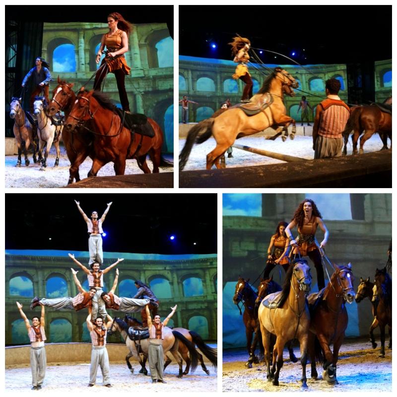 Roman Riding Cavalia Singapore - AspirantSG