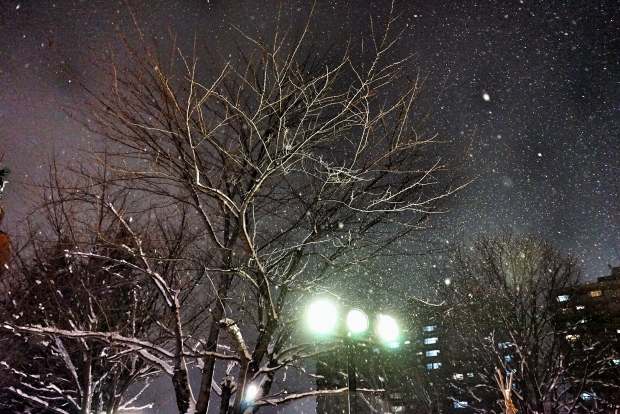 Snow At Sapporo Beer Garden - AspirantSG