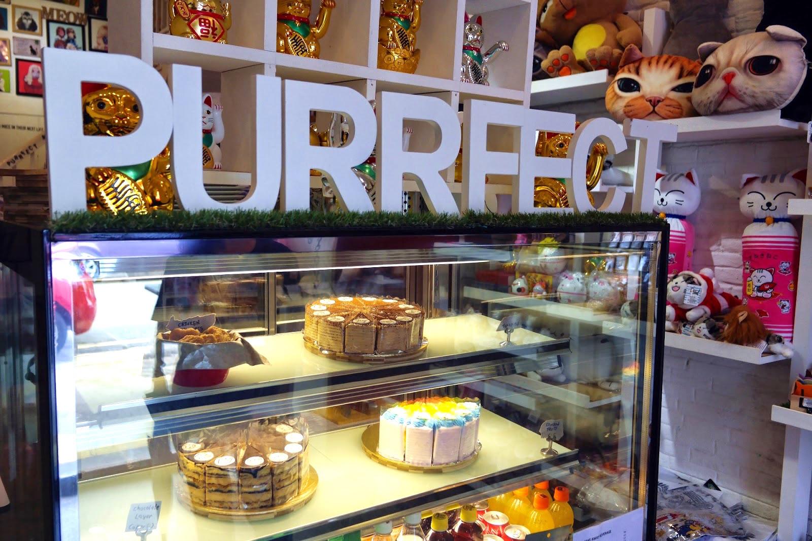 Purrfect Cat Cafe Penang - AspirantSG