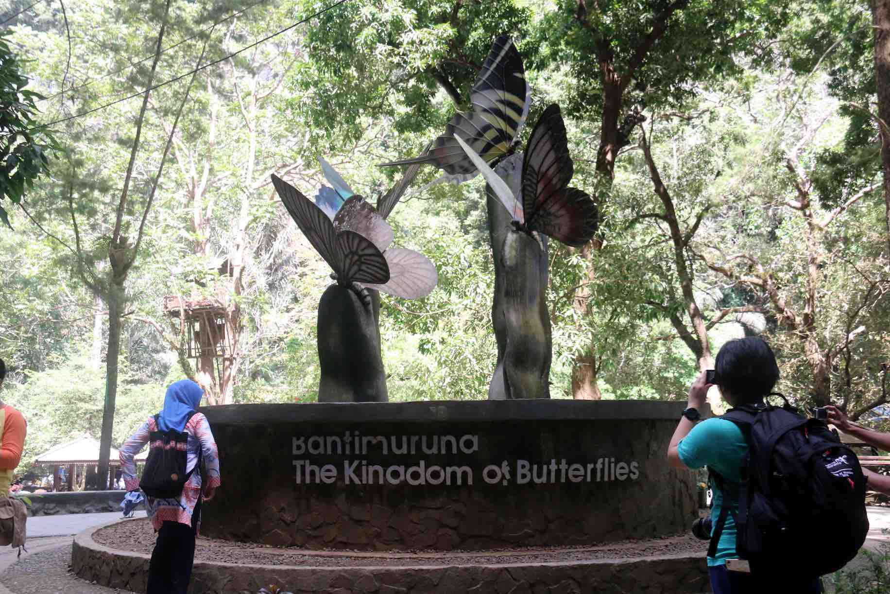 Kingdom Of Butterflies - AspirantSG
