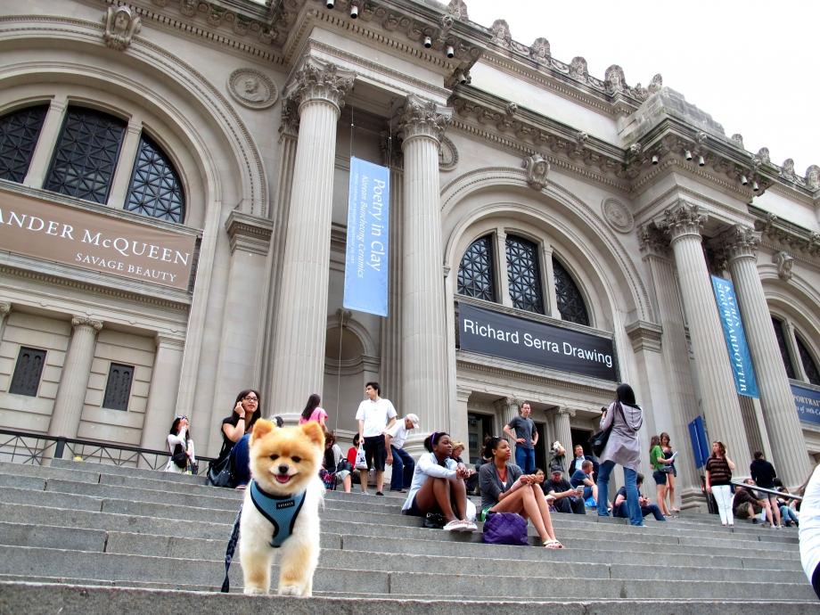 The Metropolitan Museum of Fine Art - AspirantSG