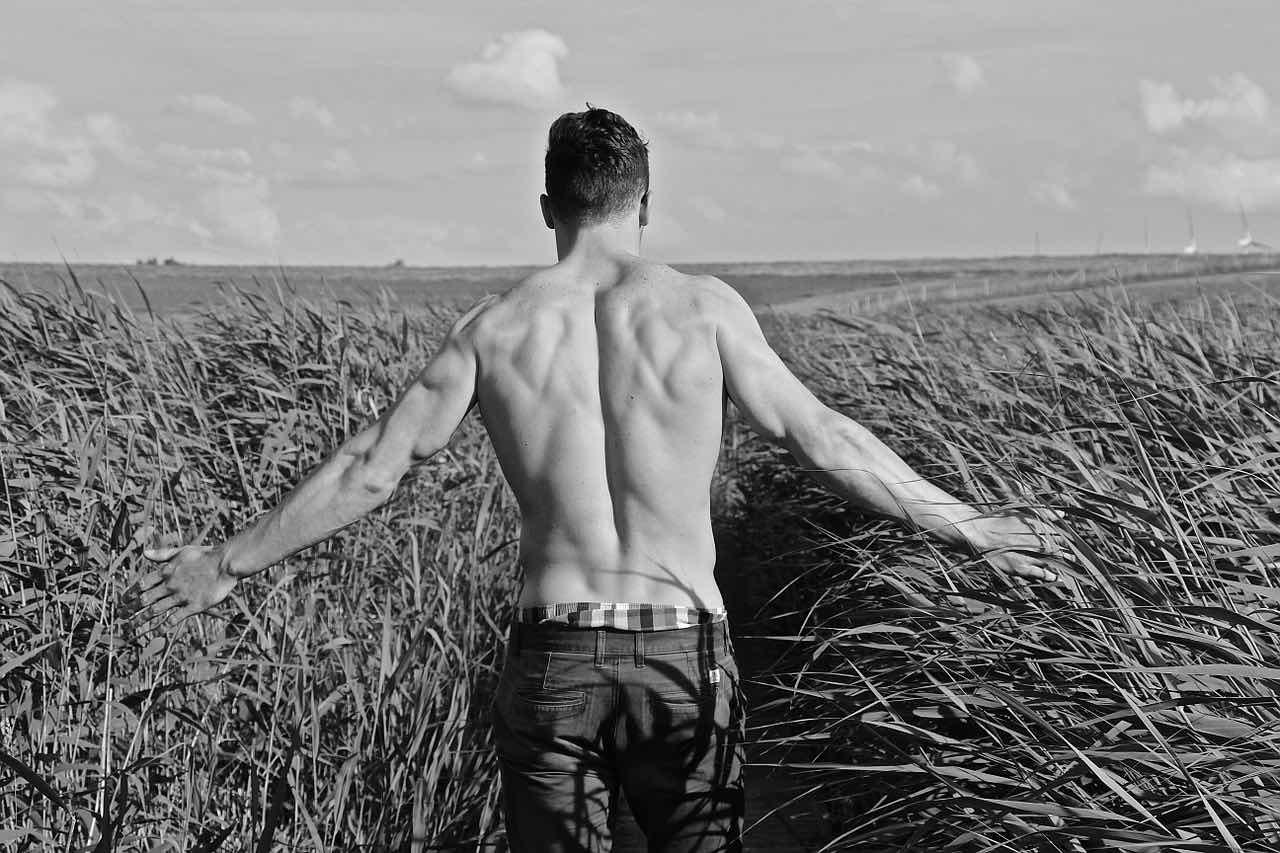topless-hunk-pixabay-free-aspirantsg