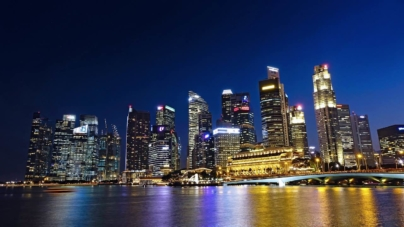 The State Of Singapore Businesses Infographics By Ice Cube Marketing