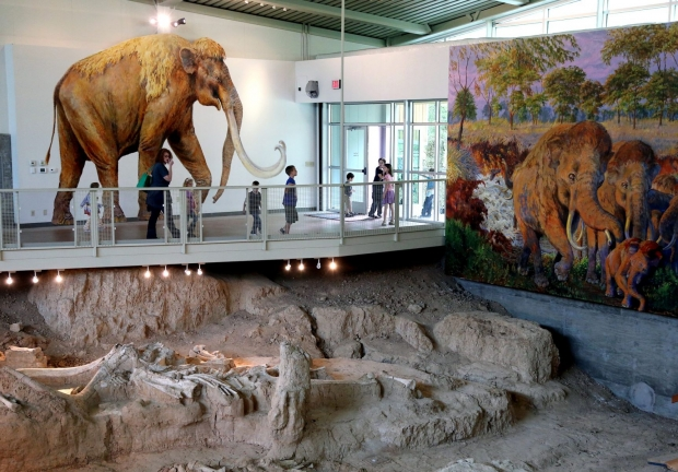 Waco Mammoth National Monument, Texas - AspirantSG
