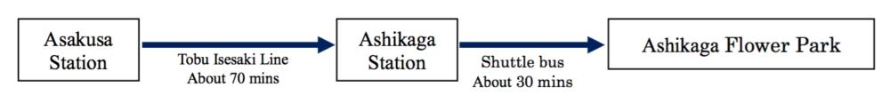 ashikaga-flower-park-flower-fantasy-directions-aspirantsg