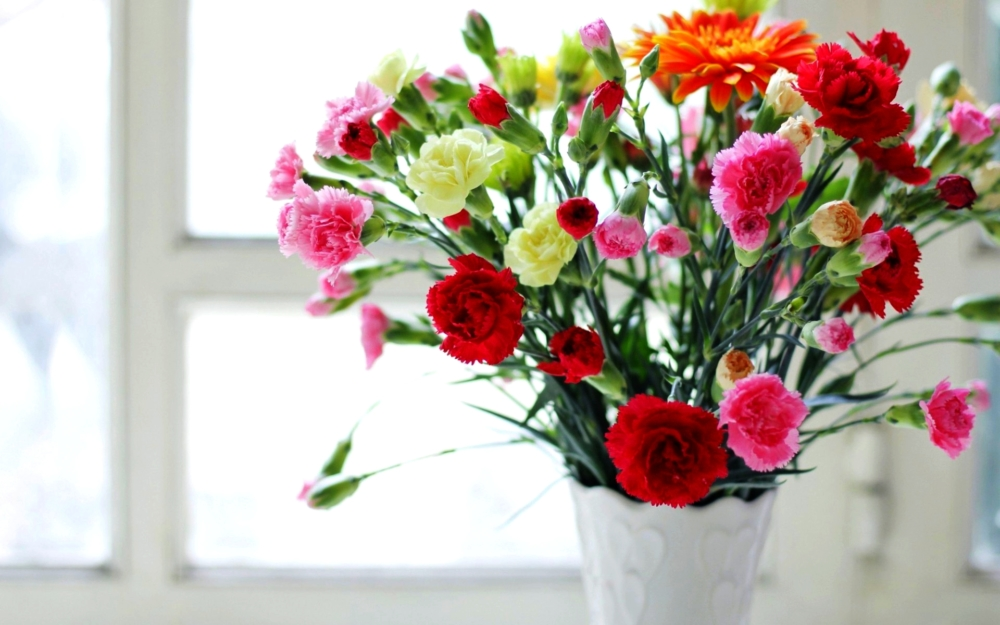 Carnations Bouquet For Valentine's Day - AspirantSG