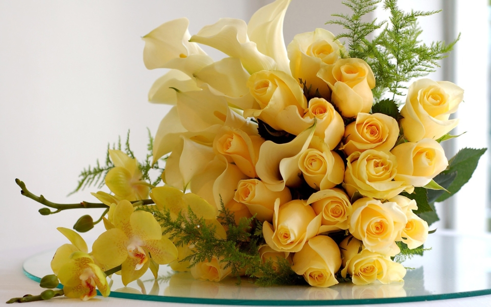 Yellow Roses for Valentine's Day - AspirantSG