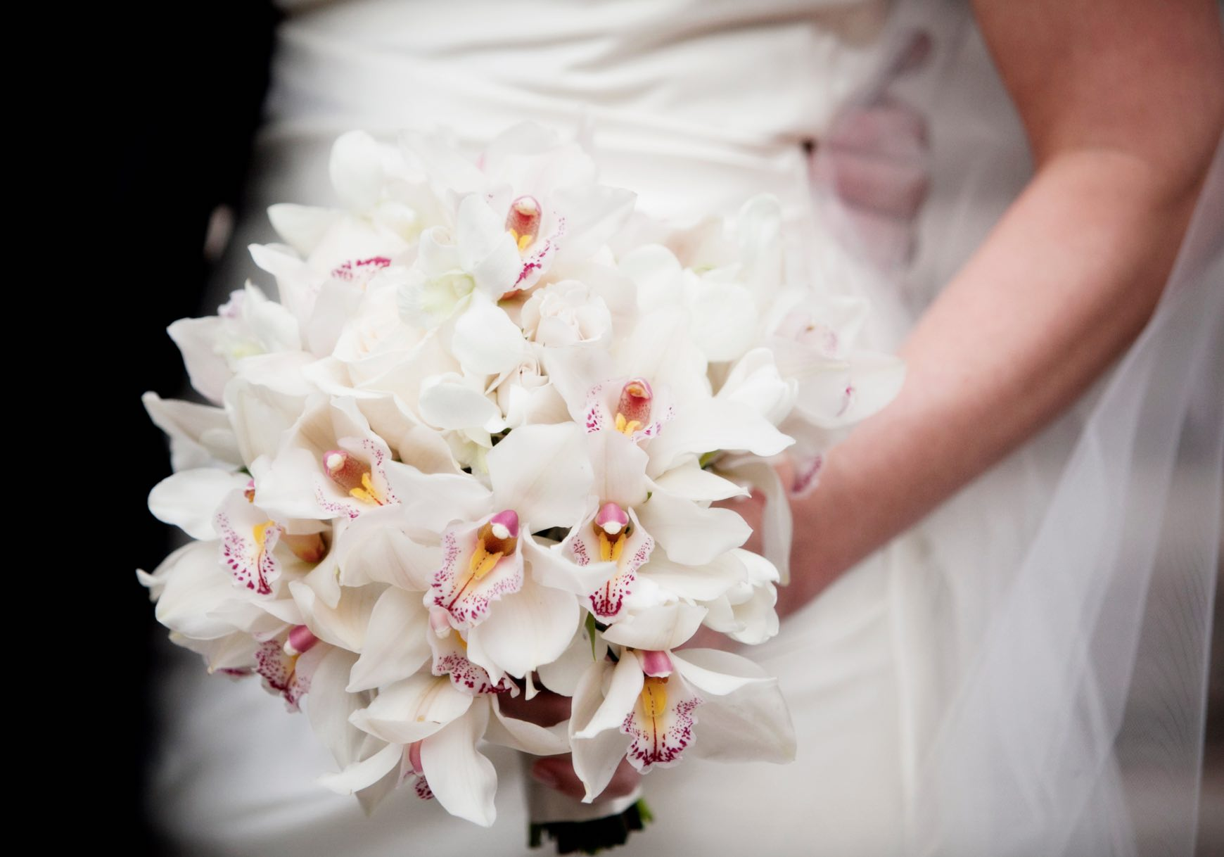 Cymbidium Orchid Wedding Flowers - AspirantSG