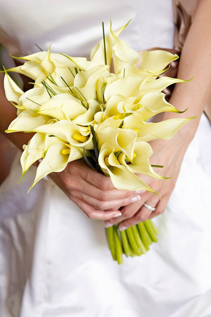 Mini Calla Lily Weddings - AspirantSG