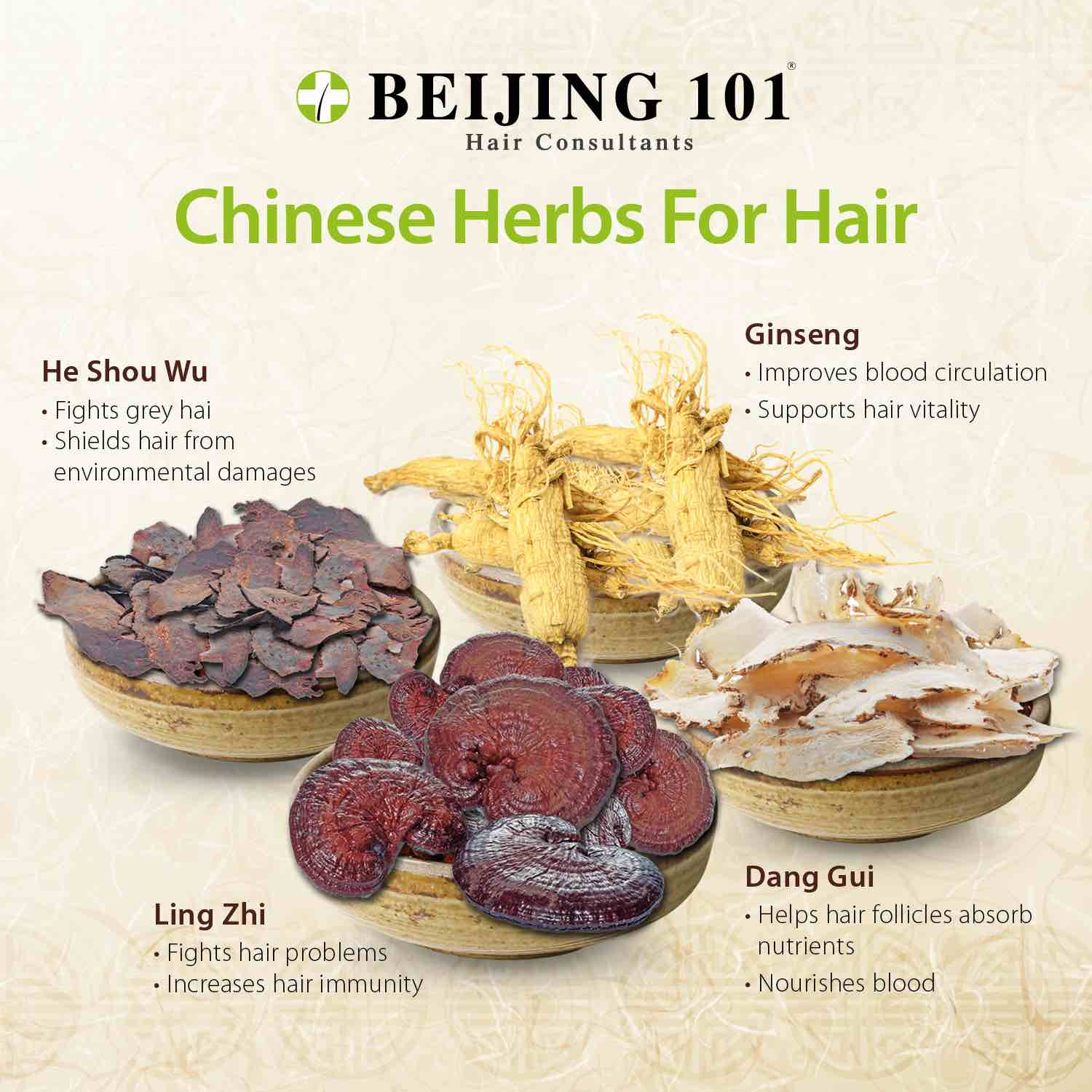 beijing-101-use-of-chinese-herbs-to-curb-hair-loss-aspirantsg