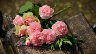 Best Singapore Florists For Flower Delivery In Singapore