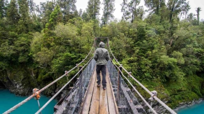 New Zealand Walking Trails – Best Natural Trails To Explore In New Zealand