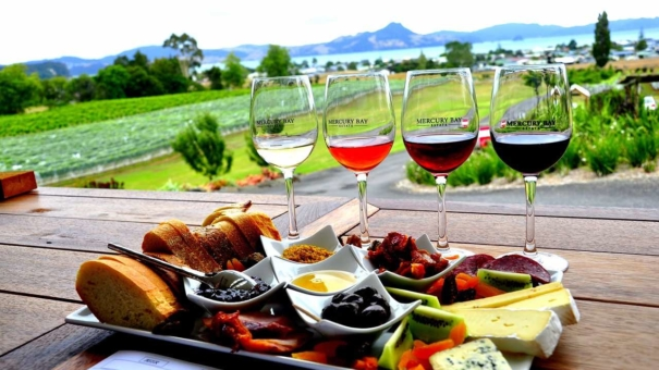 New Zealand Wine Trail – Discoveries in New Zealand's Wine Regions