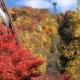 SHORYUDO Bus Pass Part 1 – Visit Inuyama, Takayama & Shin Hodaka