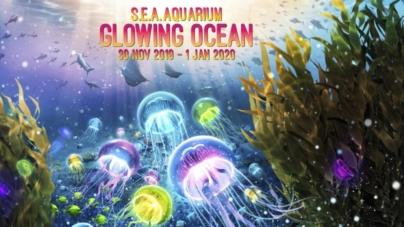 S.E.A. Aquarium Glowing Ocean Light-Art Installations On Climate Change