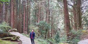 Taichung, Chiayi & Alishan Itinerary – Taiwan Nature & Cultural Escapade