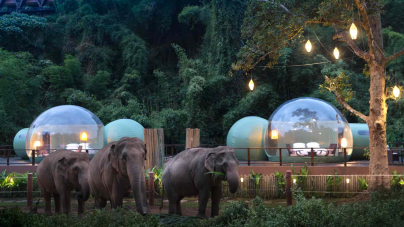 Anantara Golden Triangle Elephant Camp & Resort Jungle Bubbles