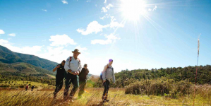 Canberra Best Hikes – Five Of The Best Hikes Around Australia's Capital