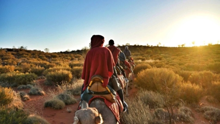 Uluru Camel Ride To Sunrise – Great Outback Expedition On Gentle Giants