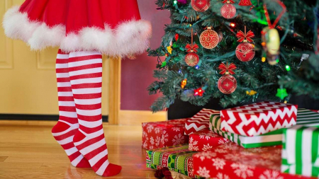 Christmas Trees Singapore – Best Places To Get Your Festive Trees