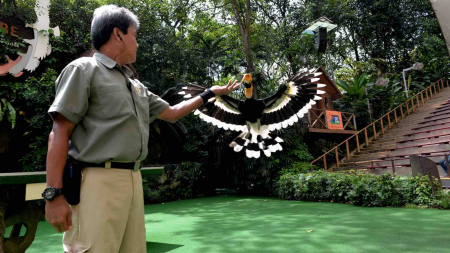 Jurong Bird Park 50th Anniversary Celebrations In Singapore