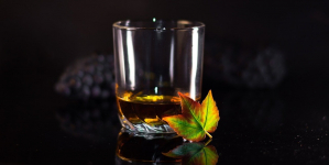 Glenmorangie Whisky Review