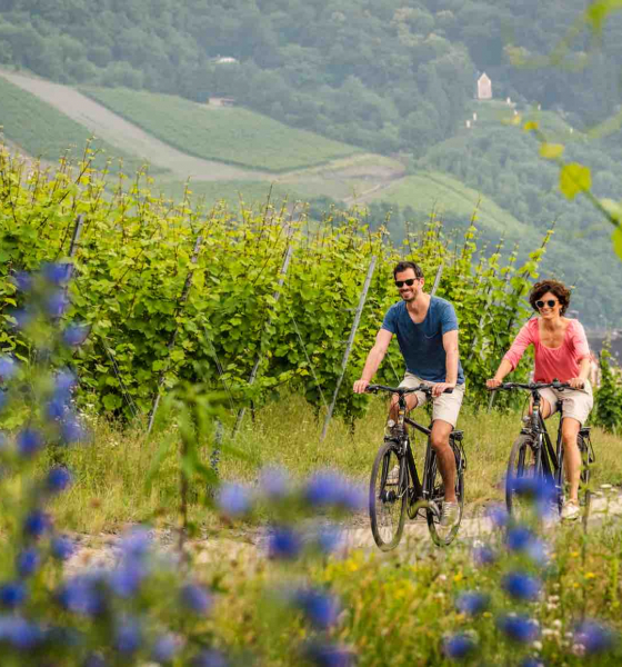 Discover Germany From Home Via Virtual Cycling Tracks & Walking Trails