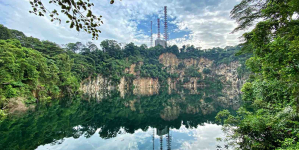 Bukit Timah Nature Reserve – Explore Singapore Hidden Nature Gem