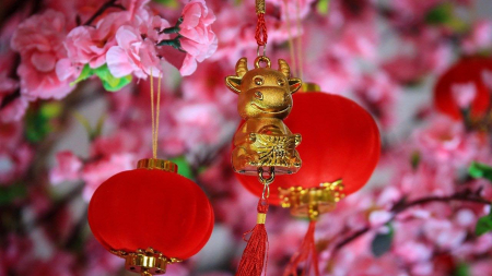 Thoughtful Gift Ideas To Send For Your Parents, Grandparents or even In-laws During Chinese New Year Celebrations